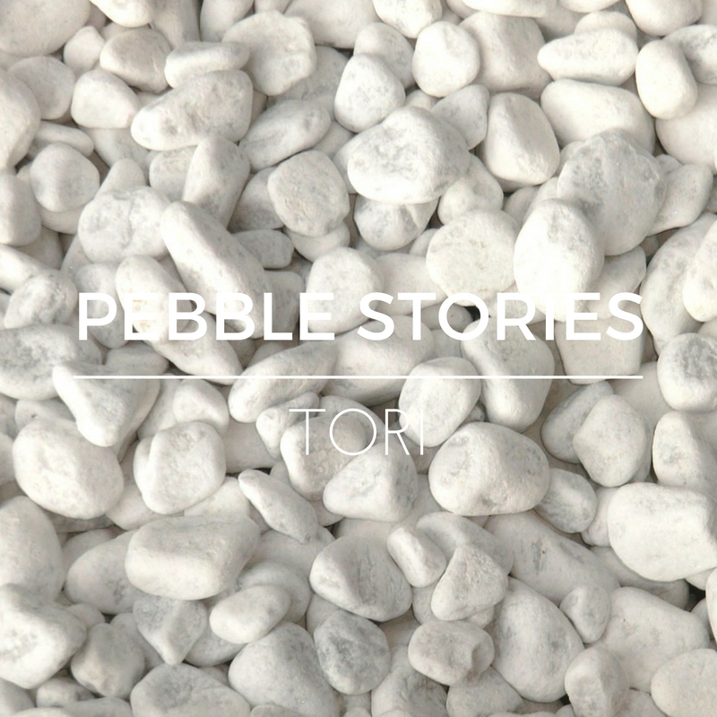 PEBBLE STORIES T